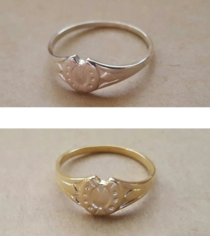 Horseshoe Signet Ring In Silver Or Solid Gold Birthstone