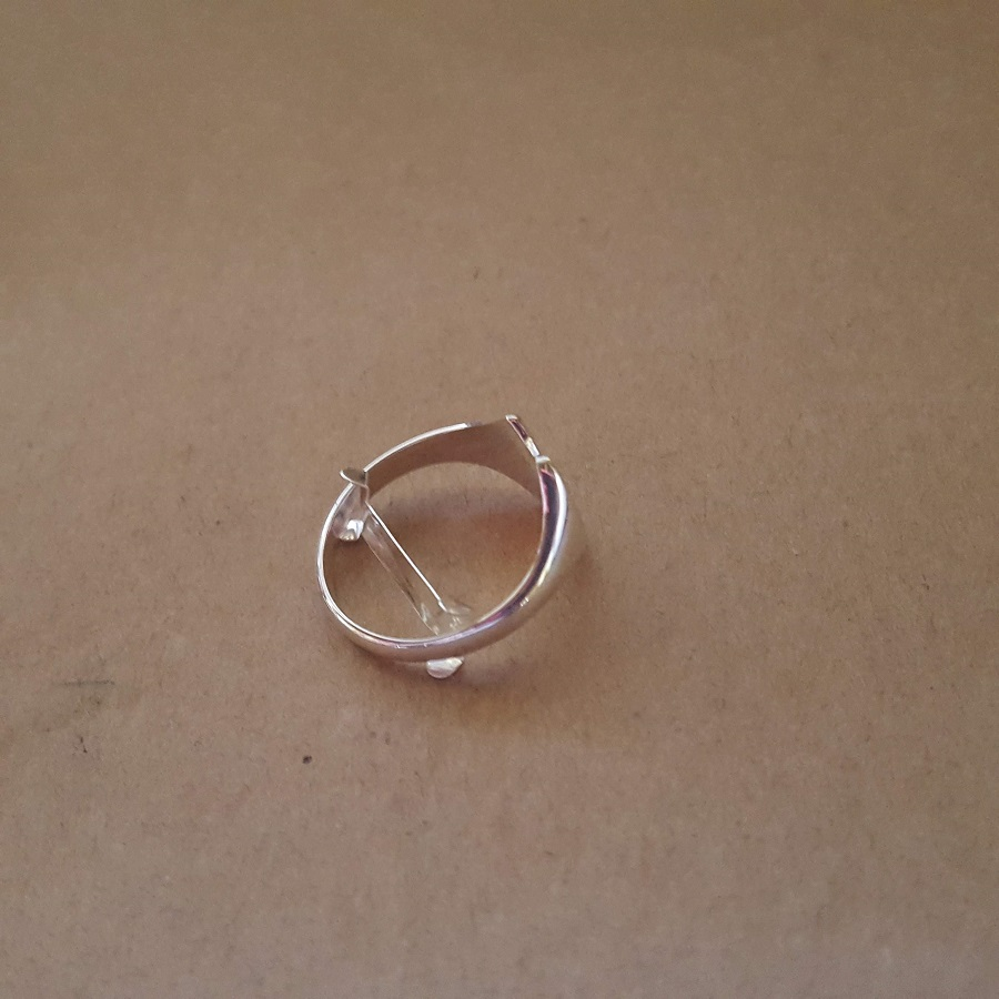 position ring clip in ring